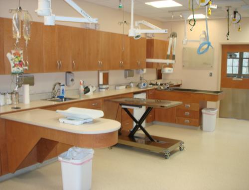 Medical – USB Brookfield Animal Hospital 2008  4